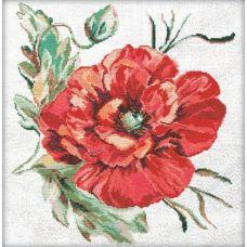 Набор для вышивания крестом Маков цвет, 50x50 (32x34), Матренин посад
